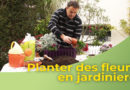 Planter des fleurs en jardinière