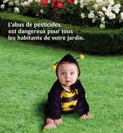Les pesticides dans notre jardin