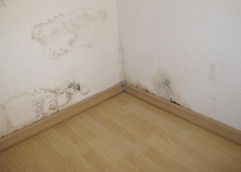 traitement-des-murs-contre-les-remontees-capillaires-d'humidite
